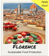 Apply Florence